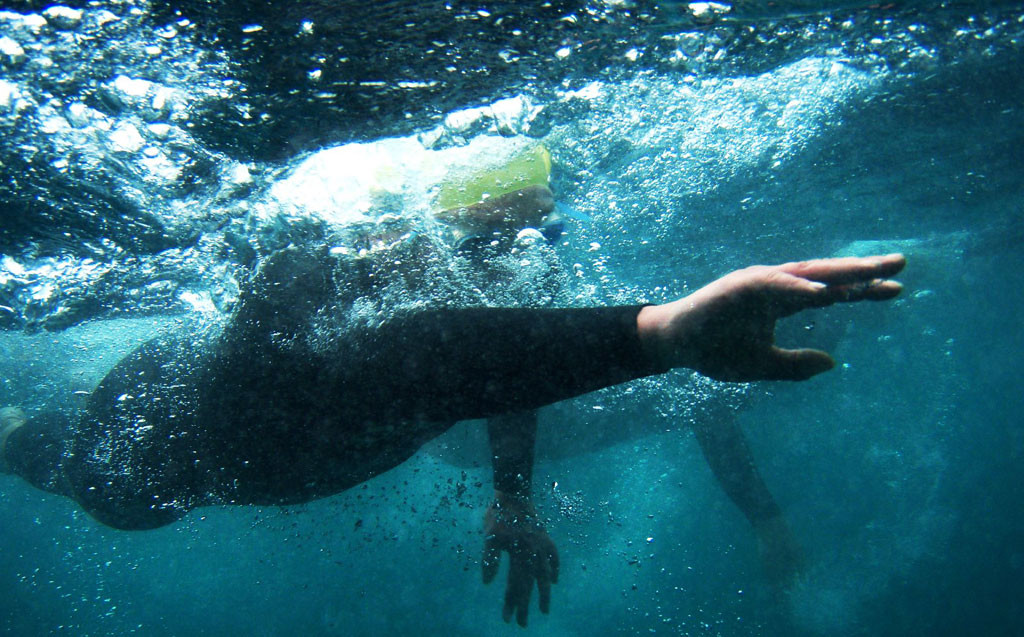 openwater swimming technique