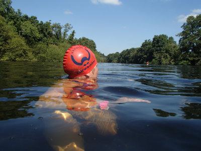 Coach swimming in Helford