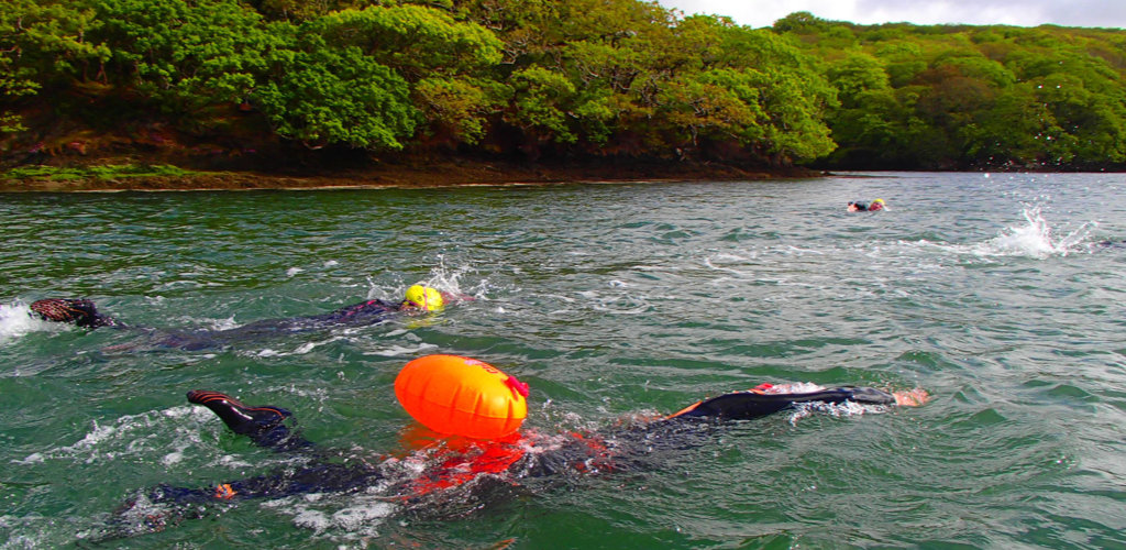 Swimming on the Helford